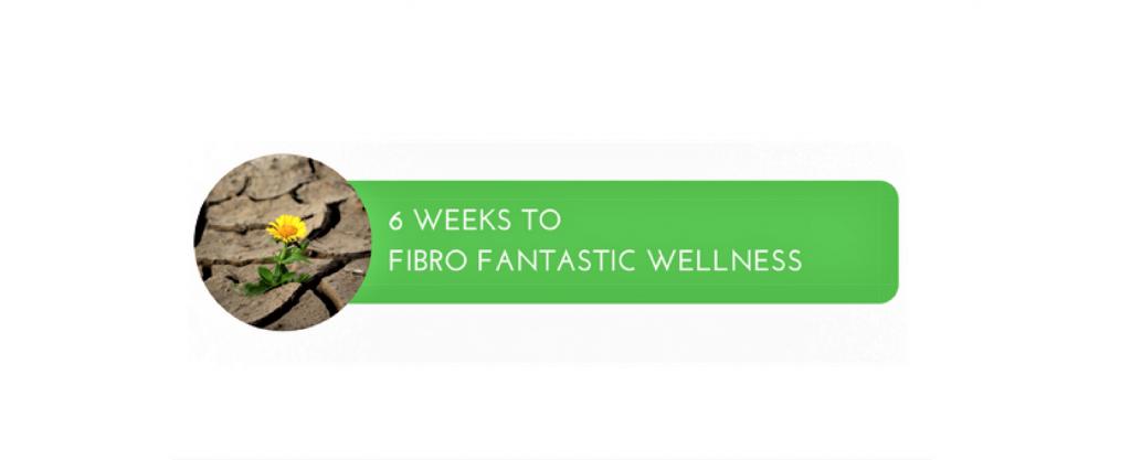6 weeks to Fibro
